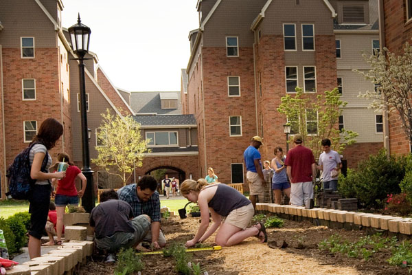 The photo shows a group of students working in a garden located in a courtyard surrounded by dorm buildings.