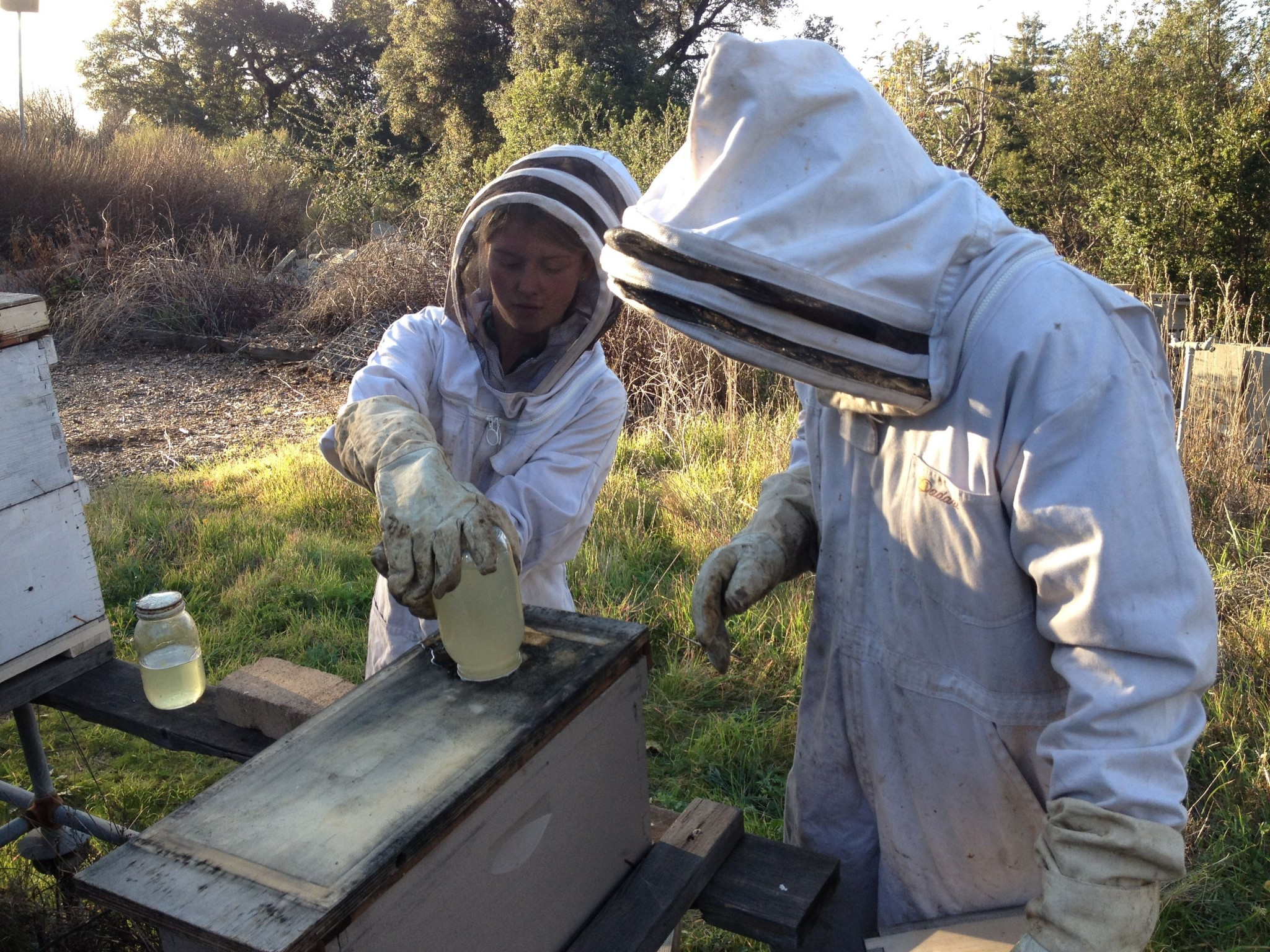 Two people in beekeeping suits work with a hive.