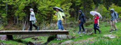 Hikers cross a footbridge in a rugged mountain landscape.