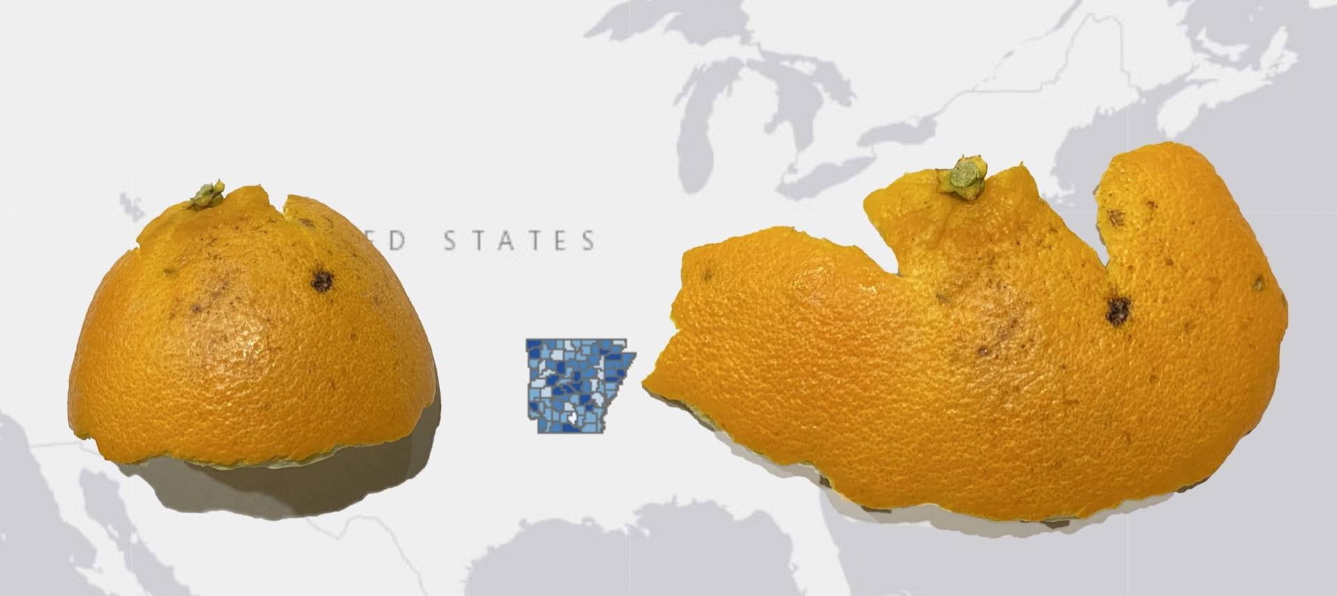 Orange peel is superimposed on US map. Arkansas is highlighted with a chloroplast map showing COVID-19 cases.