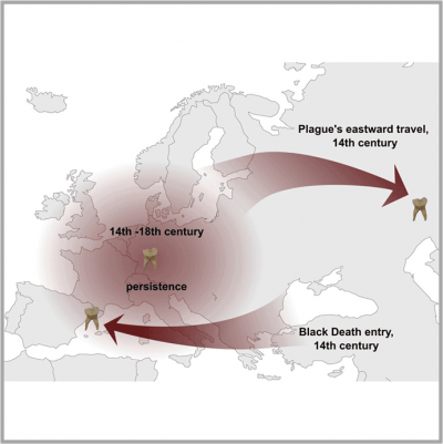 Map shows waves of Black Death plague moving east and west in the 14th century.