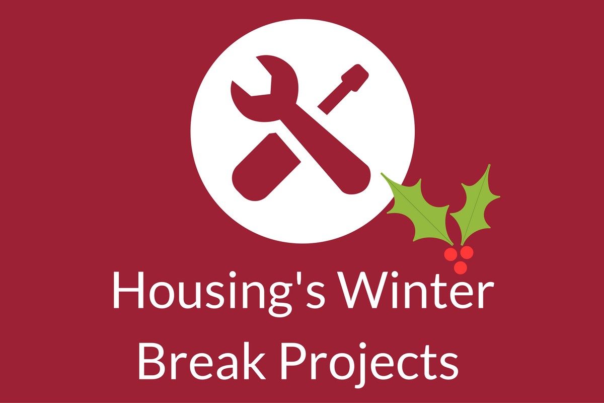 Bathroom Blitz and Duncan Furniture: Housing Projects During Winter Break