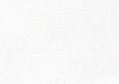 Neenah Cover white 90lb (paper)