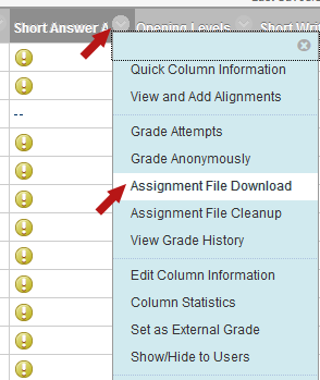 To download an entire assignment click the chevron beside the column heading and select Assignment File Download.