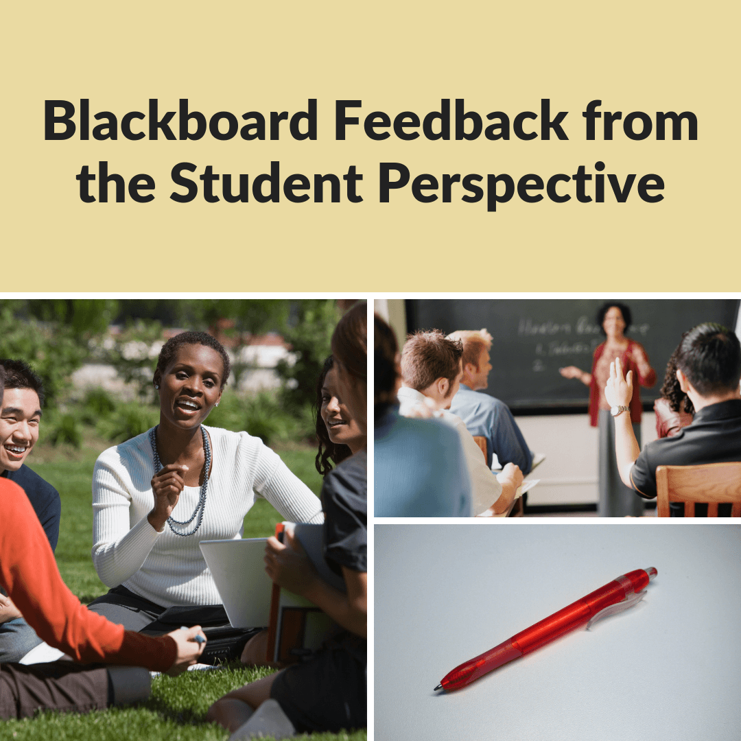 Blackboard: Feedback from the Student Perspective