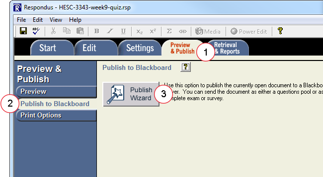 Select the Publish Wizard