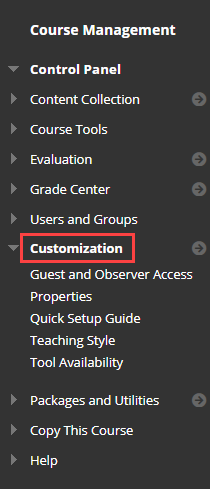 in the left course management menu, customization is highlighted