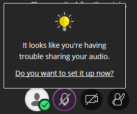 sharing audio or mic prompt