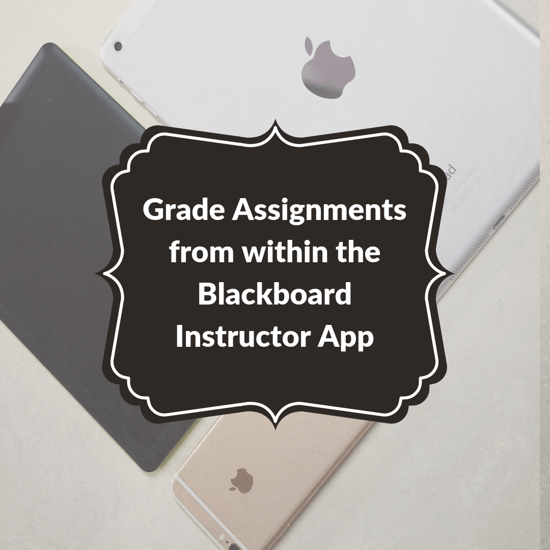 Blackboard: Grading in the Instructor App