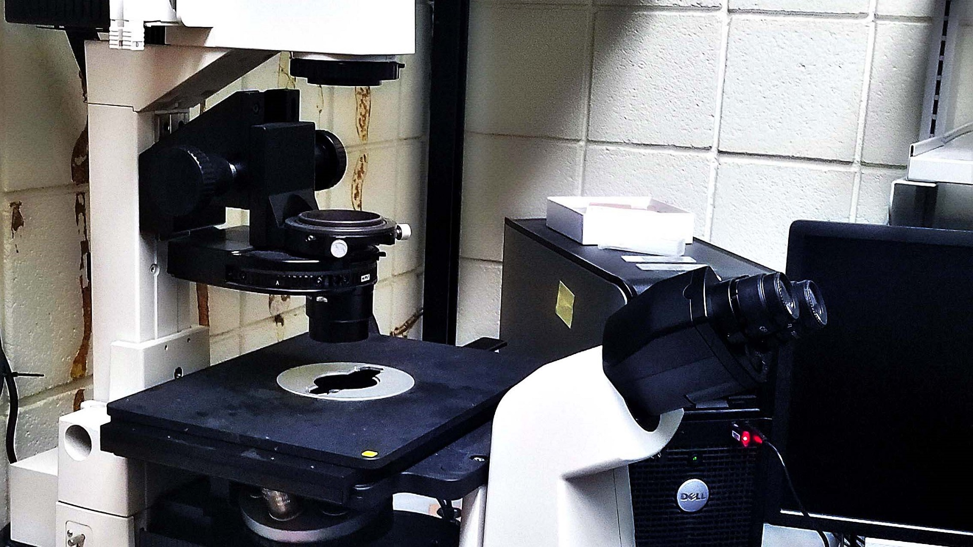 Other microscope 1920x1080-11mog40
