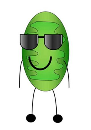 smiling mitochondria cartoon