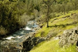 Bear Creek Canyon in the northern Sacramento Valley was a salmon run as recently as the late 1990s (BCC).
