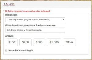 screenshot example of online giving form