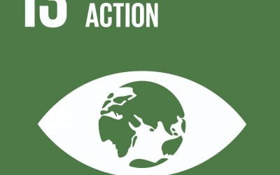 The VAC Explores SDGs: Climate Action