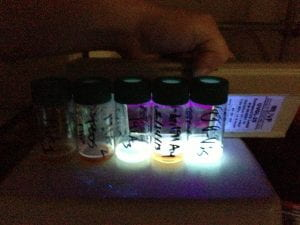 Comparing fluorescence of several monomers
