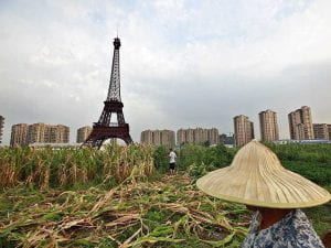 paris-in-china-corn-field