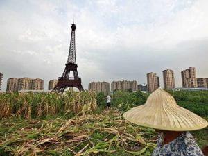 paris-in-china-corn-field