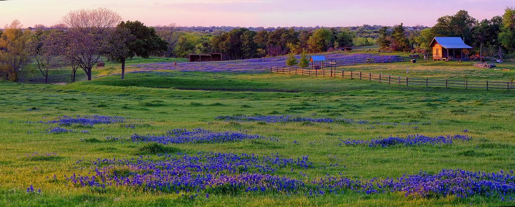 Texas Hillss