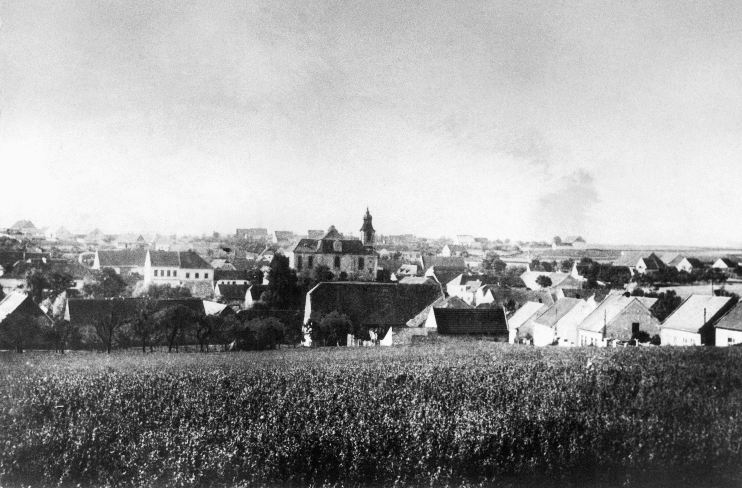 The village of Lidice, Czechoslovakia, before it was burned to the ground by Nazis on June 10, 1942. Very few escaped the massacre, which was an effort to dig out a group of Czech resistance fighters. (AP Photo/Czech News Agency)