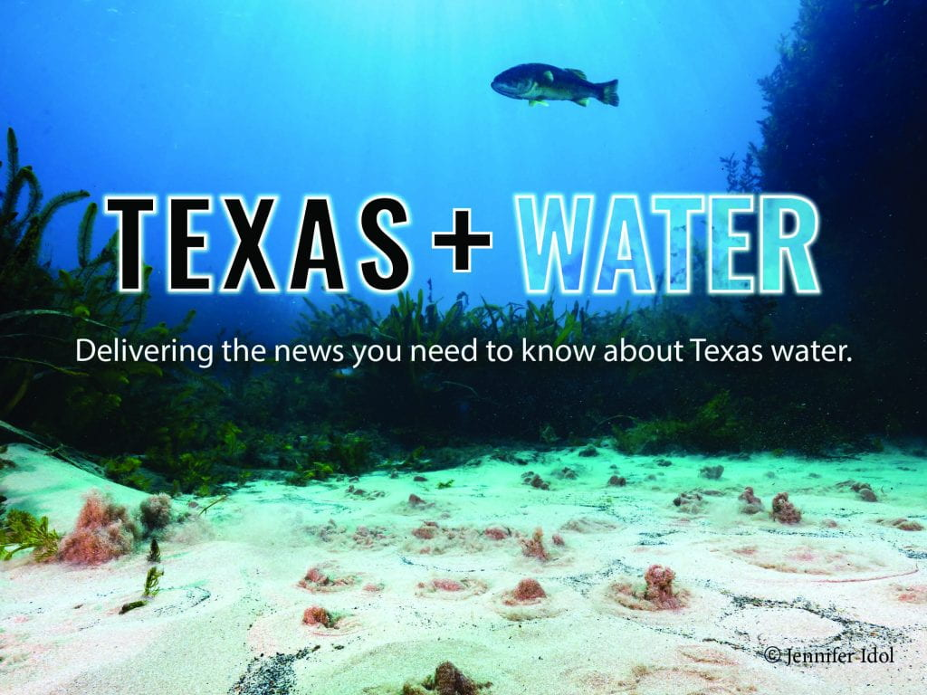 New Texas+Water Newsletter!