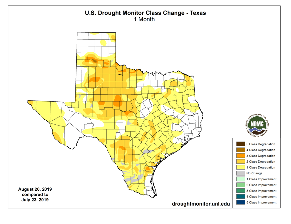 Figure 3b: Changes in the U.S. Drought Monitor for Texas between July 23, 2019, and August 20, 2019 (source).