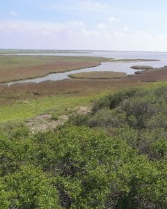 Aransas National Wildlife Refuge situated on San Antonio Bay.