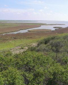 Aransas National Wildlife Refuge situated on San Antonio Bay.
