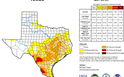 outlook+water: February 2020