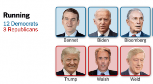 screen grab of candidate grid