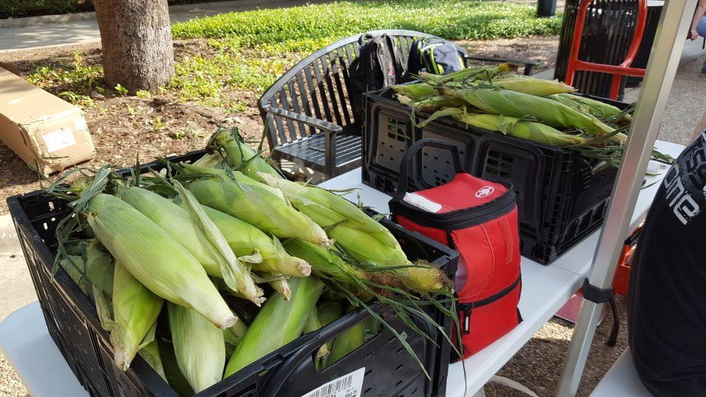 over 200 corns