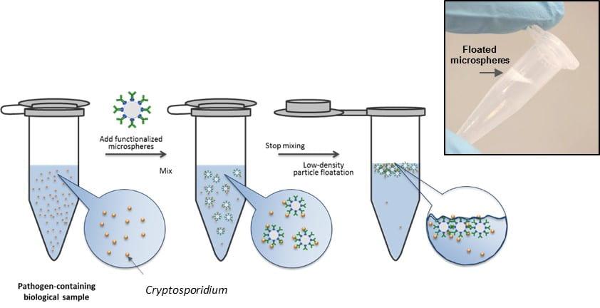 Molecular buoy