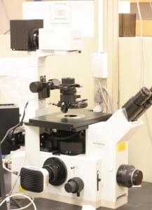 Epi-fluorescence Microscope