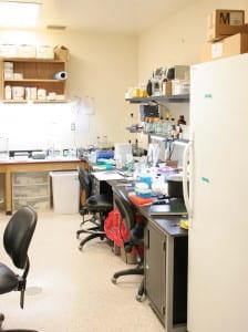 Mol Biol Lab-439