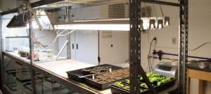 Plant Germination Room and Growth Chamber - 1st floor