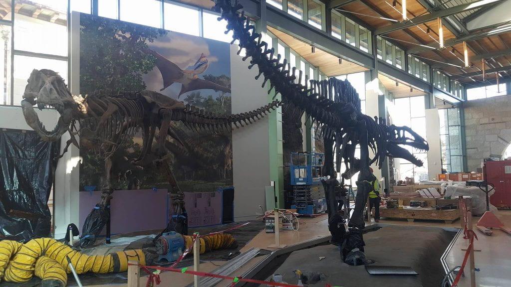 Dinosaur Hall Under Construction