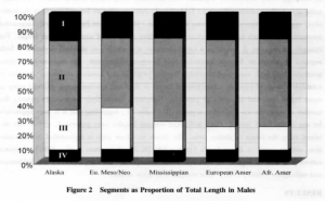 Figure 2 - Segments as proportion of total length in males, Figure 3 - Segments as proportion of total length in females, Fellmann, 2006