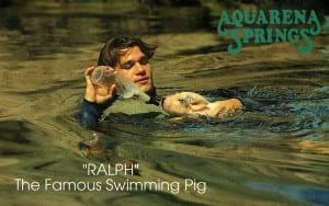 Aqua_C38216 A_2
