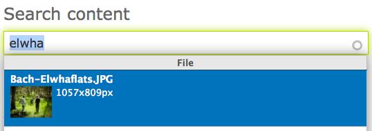 Drupal, Search Content