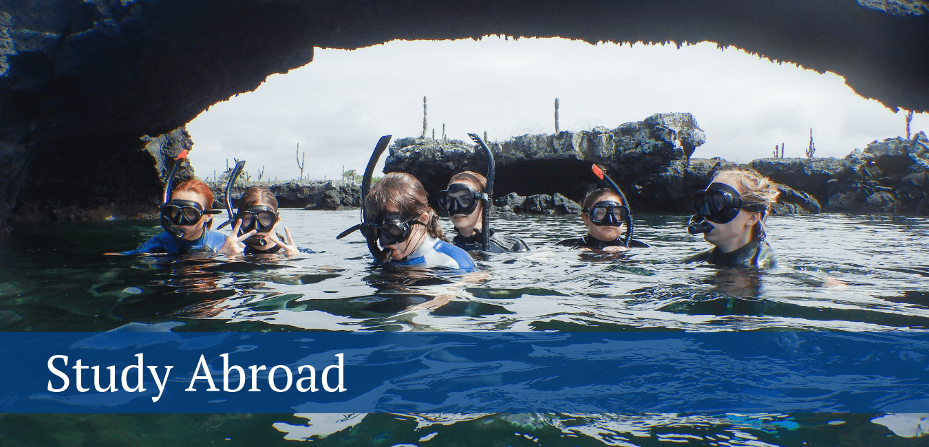 Study Abroad – Image of students snorkeling in the Galapagos