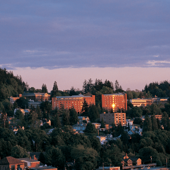 Distant campus view during sunset
