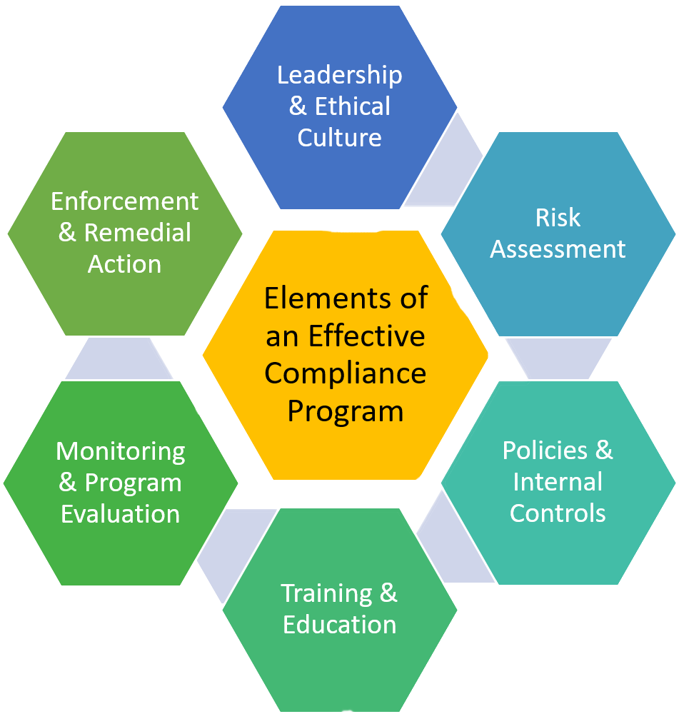 Diagram of elements of an effective compliance programs