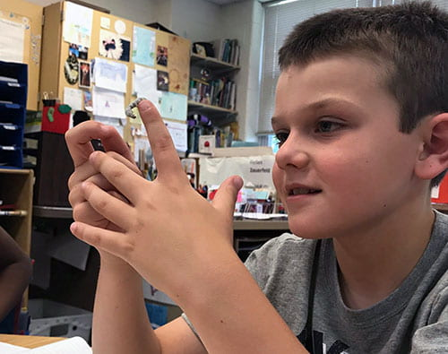 CES second-graders learn about insect life cycle