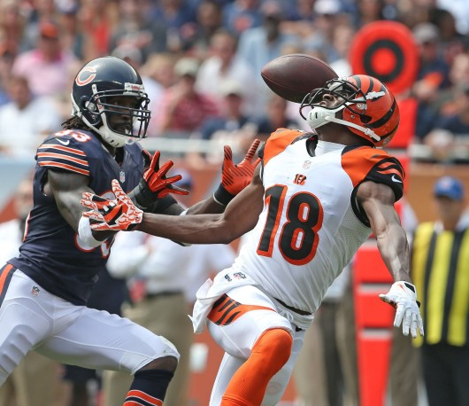 Chicago Bears cornerback Charles Tillman (33) intercepts a ball intended for Cincinnati Bengals wide receiver A.J. Green (18) during the second quarter at Soldier Field in Chicago, Illinois, on Sunday, September 8, 2013. Credit: Courtesy of MCT