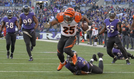 Cincinnati Bengals running back Giovani Bernard (25) runs the ball during a game against the Baltimore Ravens Nov. 10. The Bengals lost, 20-17. Credit: Courtesy of MCT