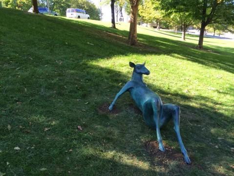 Bronze bucks' eyes gaze at Columbus scenery on banks of Scioto