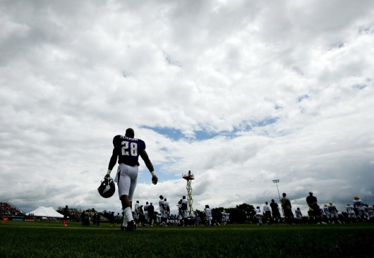 Adrian Peterson of the Minnesota Vikings walks on the field on a rainy day during the team's training camp on July 27 at Minnesota State University in Mankato, Minn.  Credit: Courtesy of MCT