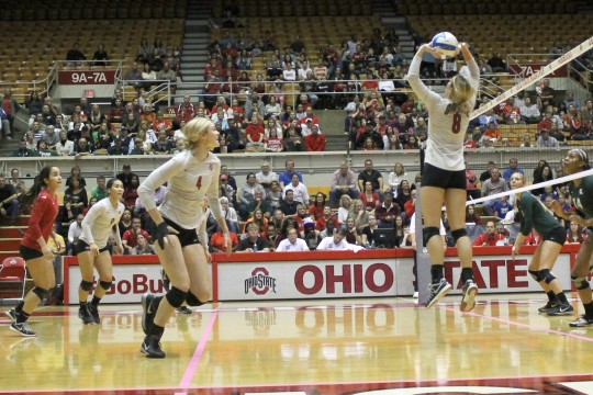 Senior setter Taylor Sherwin (8) sets the ball for her teammates during a game against Michigan State on Oct. 24 at St. John Arena. OSU won, 3-2. Credit: Taylor Cameron / Lantern photographer