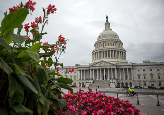 Action items such as Pell Grant award amounts and the Affordable Care Act were included on the House of Representatives Fiscal year 2016 budget, which was released last week and passed through the House on Wednesday. Credit: Courtesy of TNS