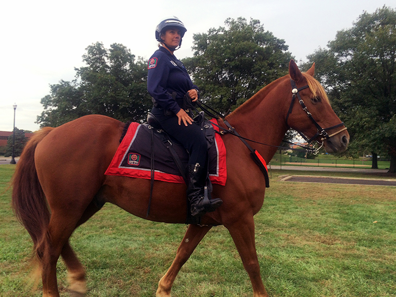 OSU police officer Regina Shoopman of the OSU Mounted Unit rides her horse, Red, a Belgium-thoroughbred cross, outside of Pullman Hall at Ohio State. Credit: Lee McClory / Senior Lantern Reporter