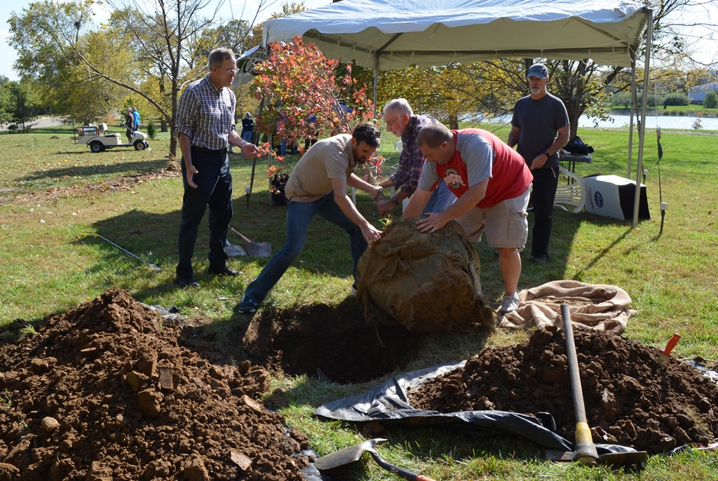 A small group plants a tree at the 2014 ArboBlitz at Chadwick Arboretum North. Credit: Courtesy of Christina Voise